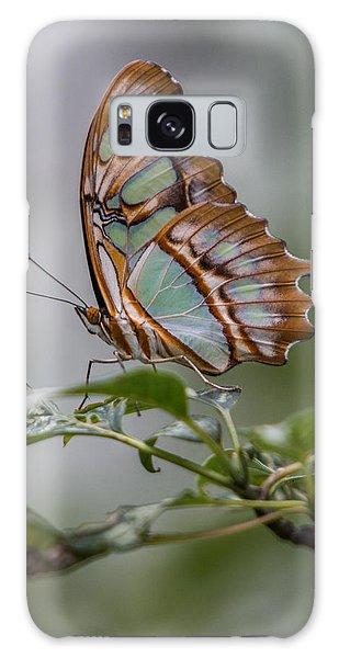 Malachite Butterfly Profile Galaxy Case