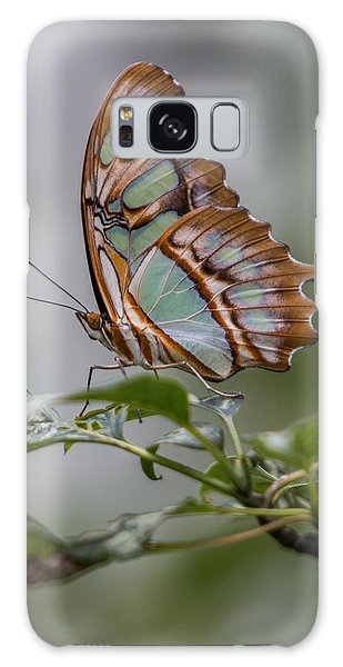 Malachite Butterfly Profile Galaxy Case by Patti Deters