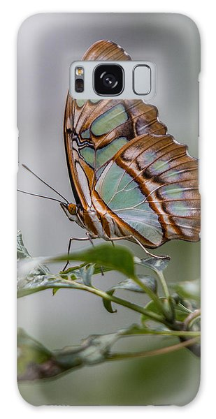 Malachite Butterfly Profile Galaxy Case
