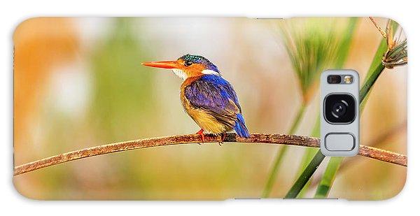 Malachite Kingfisher Hunting Galaxy Case