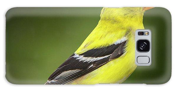 Male American Golden Finch On Twig Galaxy Case