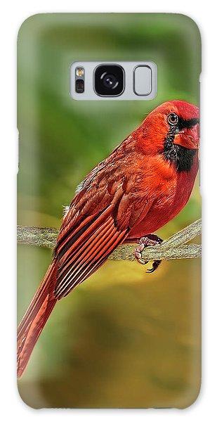 Male Cardinal Headshot  Galaxy Case