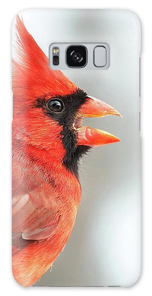 Male Cardinal In Profile Galaxy Case