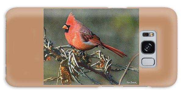 Male Cardinal Galaxy Case by Ken Everett