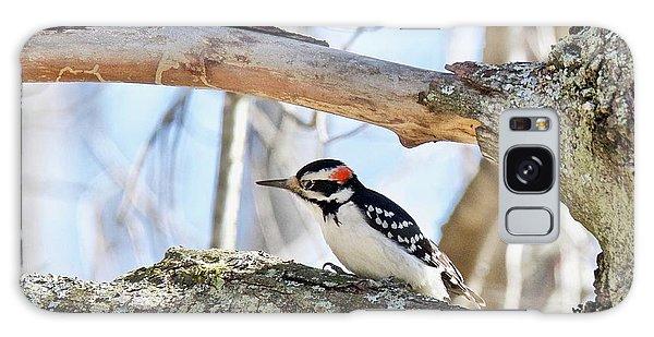 Male Downey Woodpecker 1112 Galaxy Case by Michael Peychich