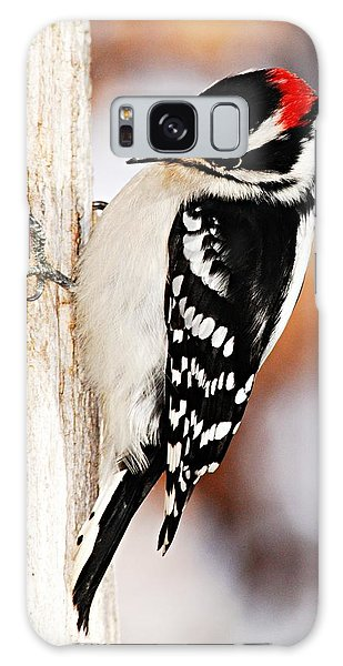 Male Downy Woodpecker 3 Galaxy Case