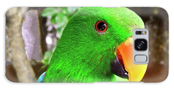 Male Eclectus Parrot II Galaxy Case