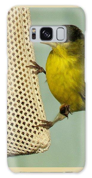 Male Goldfinch On Sock Feeder Galaxy Case