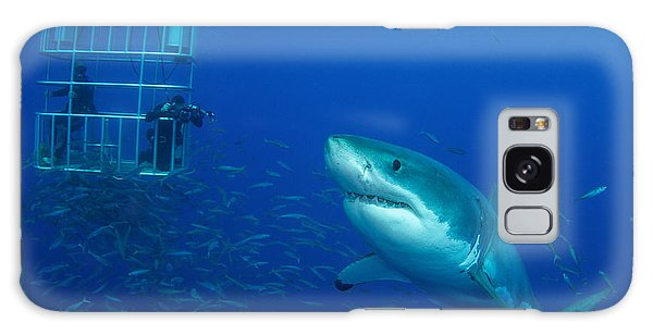 Hunting Island Galaxy Case - Male Great White Shark And Divers by Todd Winner