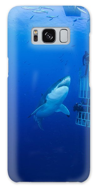 Sharks Galaxy Case - Male Great White With Cage, Guadalupe by Todd Winner