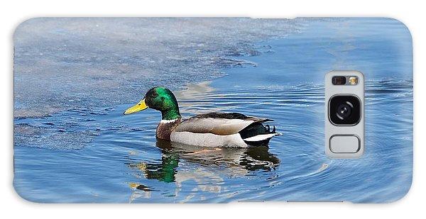 Male Mallard Duck Galaxy Case by Michael Peychich