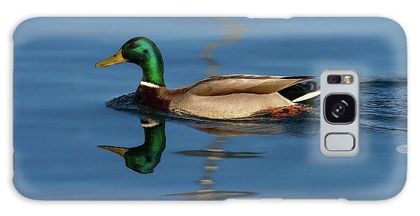 Male Mallard Or Wild Duck, Anas Platyrhynchos, Portrait Galaxy Case