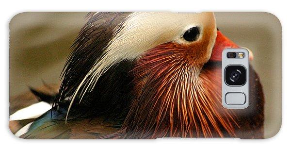 Male Mandarin Duck China Galaxy Case by Ralph A  Ledergerber-Photography