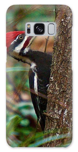 Male Pileated Woodpecker Galaxy Case