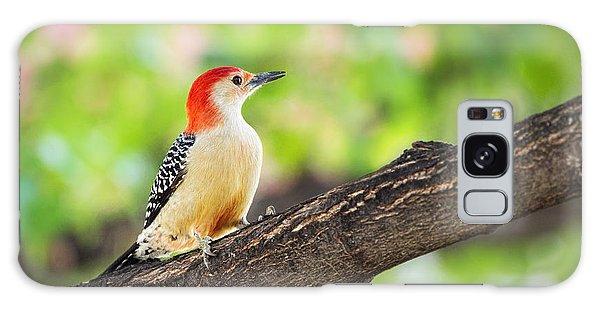 Male Red-bellied Woodpecker Galaxy Case