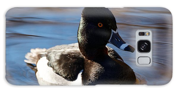Male Ring-necked Duck Galaxy Case