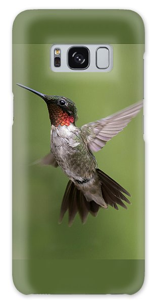 Male Ruby Throated Hummingbird Galaxy Case by David Lester