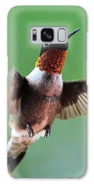 Male Ruby-throated Hummingbird Galaxy Case