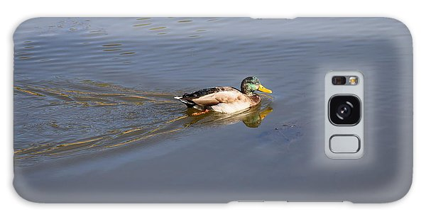 Mallard Duck Burgess Res Co Galaxy Case