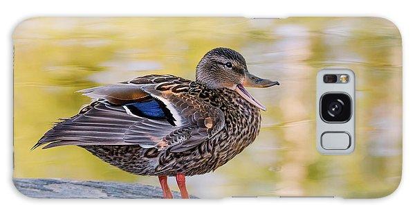 Mallard Duck Galaxy Case by Kathy King