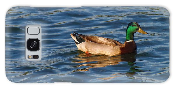 Mallard Drake Duck Swimming Galaxy Case