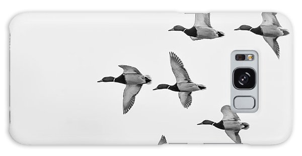 Mallards Galaxy Case by Dan Traun