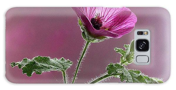 Mallow Flower 3 Galaxy Case