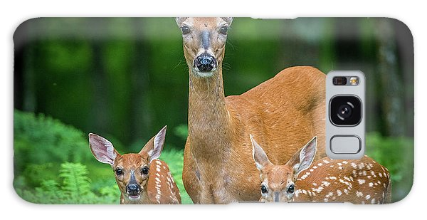 Mama And Fawns Galaxy Case