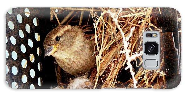 Mama Bird Galaxy Case