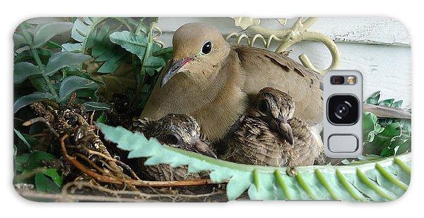 Mama Morning Dove Galaxy Case
