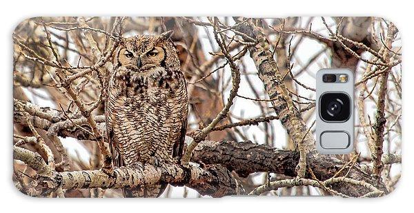 Mama Owl In Camo Galaxy Case