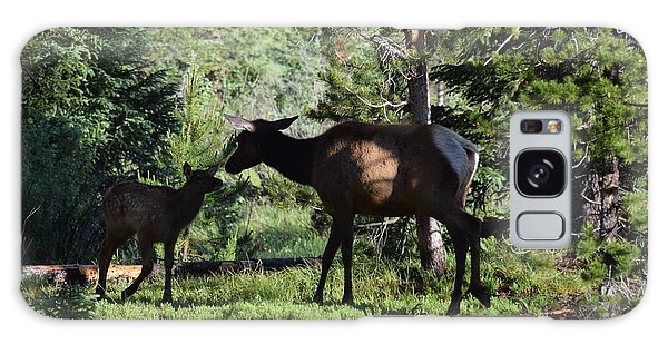 Elk Calf - Mother Rmnp Co Galaxy Case