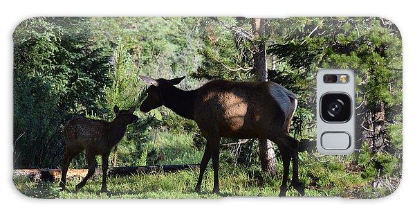 Elk Calf - Mother Rmnp Co Galaxy Case