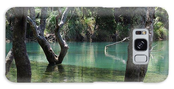 Mangrove Mystique Galaxy Case