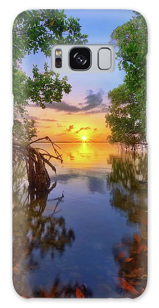 Mangrove Sunset From Jensen Beach Florida Galaxy Case by Justin Kelefas