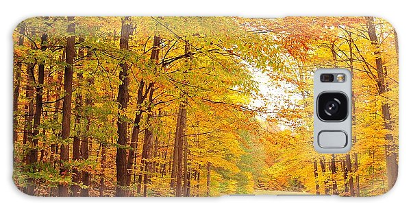 Manisee National Forest In Autumn Galaxy Case