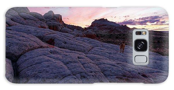 Man's Best Friend Sunset Galaxy Case by Jonathan Davison