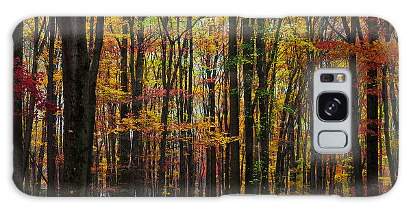 Many Colors Of Autumn Galaxy Case by April Reppucci