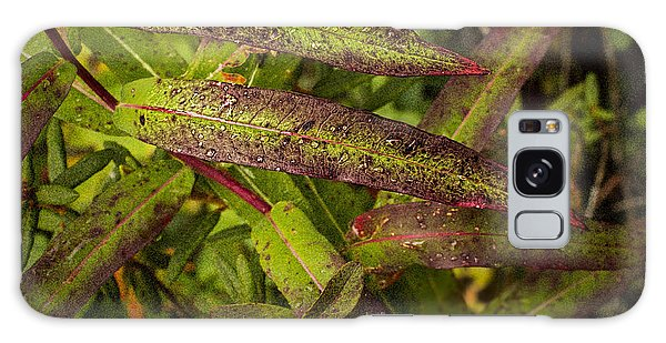 Many Colors Of Fall Fireweed Galaxy Case