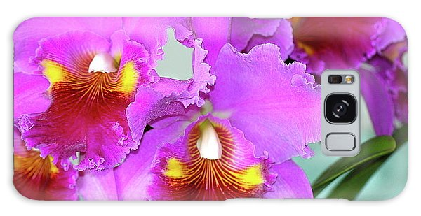 Many Purple Orchids Galaxy Case