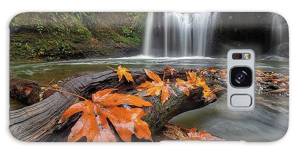 Maple Leaves On Tree Log At Hidden Falls Galaxy Case