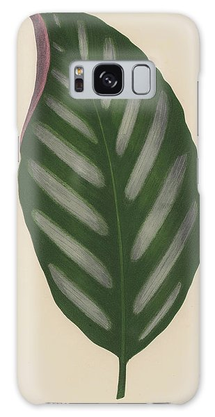Maranta Porteana Galaxy Case by English School