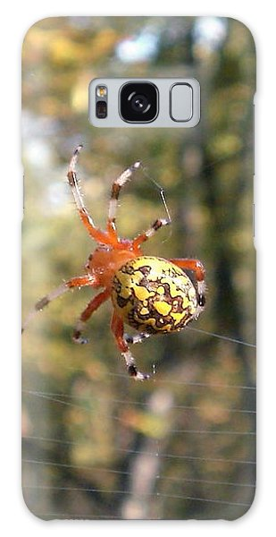 Marbled Orb Weaver Galaxy Case