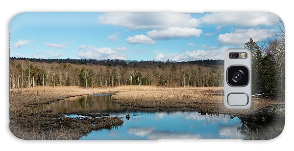 March Afternoon At Black Creek Galaxy Case