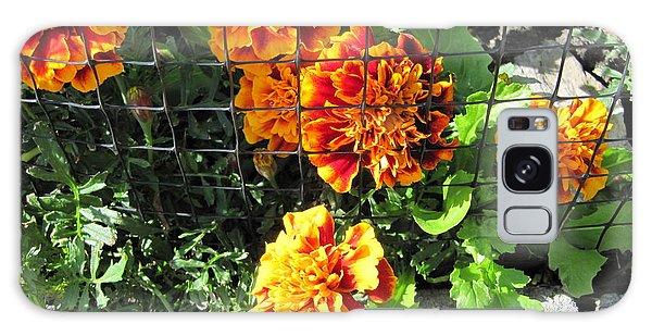 Marigolds In Prison Galaxy Case