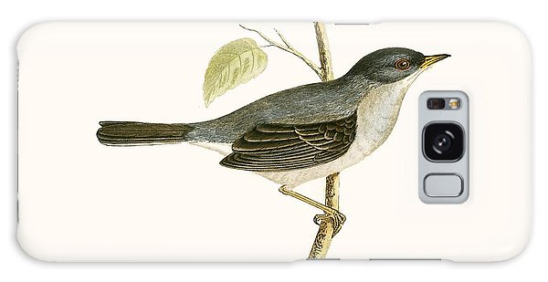 Song Bird Galaxy Case - Marmora's Warbler by English School