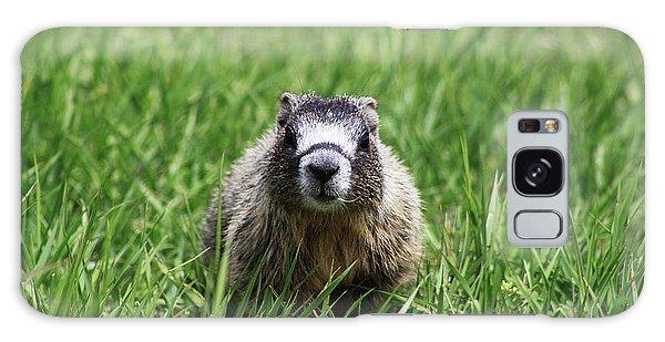 Marmot Pup Galaxy Case