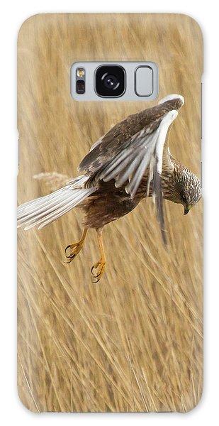 Marsh Harrier Hunting Galaxy Case