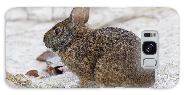 Marsh Rabbit On Dune Galaxy Case