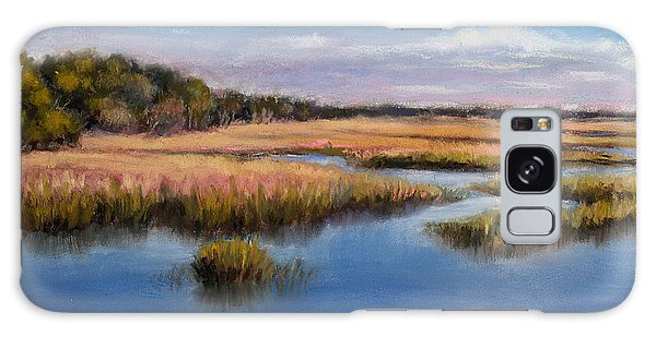 Marshland In Florida Galaxy Case